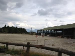 乗馬クラブ アルカディア